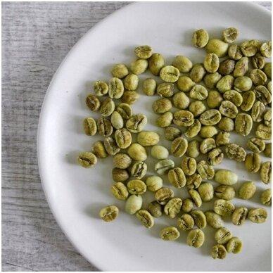 Žalia kava - kas ir kaip?