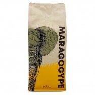 """Kavos Pupelės """"Maragogype"""" 1kg."""