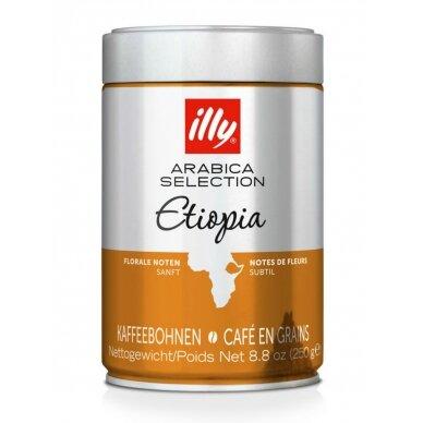 """Kavos pupelės ILLY """"ETHIOPIA"""" 250g."""