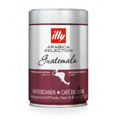 "Kavos pupelės Illy ""Guatemala"" 250g."