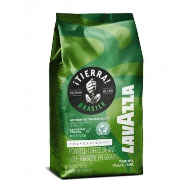 "Kavos pupelės Lavazza ""Tierra Brasile Intenso"" 1kg"