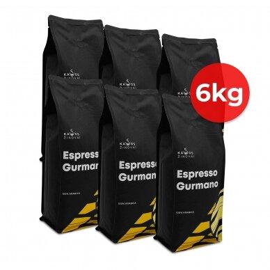 """Kavos Žinovų pupelės """"Gurmano"""" 6kg"""
