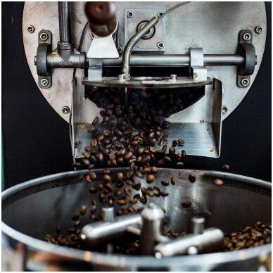 Kavos pupelių skrudinimas - menas.