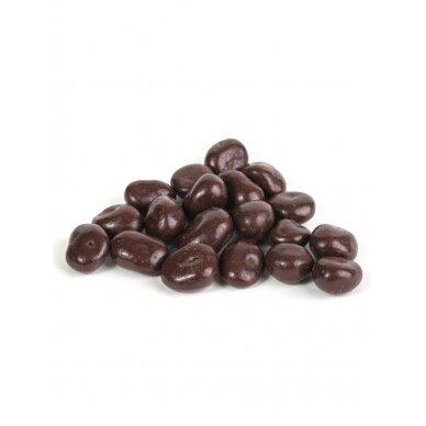 Rūta Džiovintos spanguolės su šokoladu 300g.